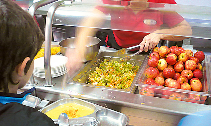 Curso sobre comedores escolares ecológicos para profesionales vinculados a la cocina