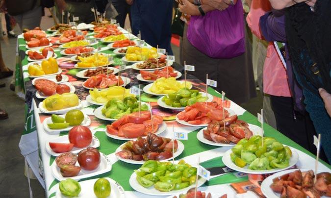 Además de <i>showcooking</i> se realizaron diversas catas de vinos, quesos o de tomates como la de la foto.