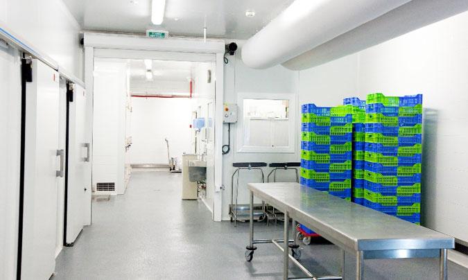 Zona de recepción, almacenes y cámaras. Aquí se comprueban las materias primas, se identifican y se clasifican. ©Euroline.