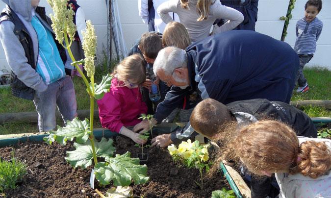 El primer Premio huertos escolares ecológicos ya tiene ganadores