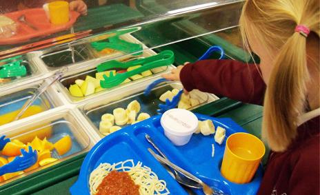 Curso de técnico superior en nutrición para trabajadores de comedores escolares