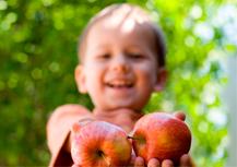 La Generalitat presenta el 5º Plan de consumo de fruta y verdura en las escuelas
