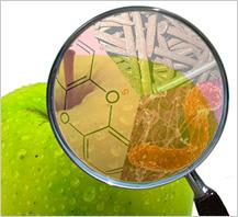 Mapa de peligros alimentarios, una útil herramienta para el sistema de autocontrol