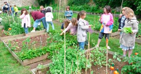 Abierta la inscripción a la primera edición del Premio huertos escolares ecológicos