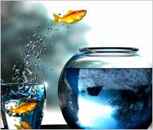 El invento de la rueda... ser receptivo abre las puertas a nuevas oportunidades