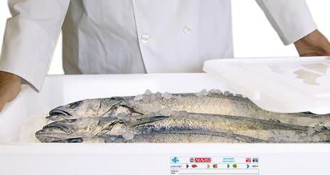 Buenas prácticas para mantener bajo control el almacenamiento en frío de los alimentos