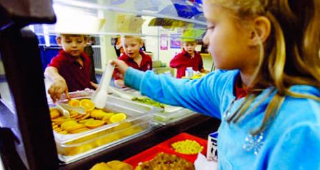 Curso on line de cocinero profesional especializado en comedores escolares
