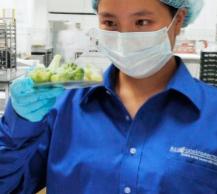 China alcanza, en el último trimestre, nuevo récord en escándalos alimentarios