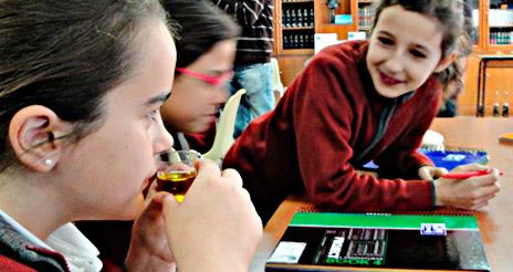 Talleres para acercar la cultura del aceite de oliva a escolares entre 6 y 8 años