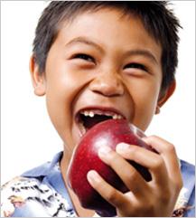La Cátedra Ordesa promueve el primer Libro blanco de la nutrición infantil