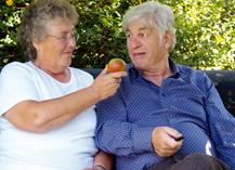 Uno de cada tres ancianos españoles se encuentra en riesgo nutricional