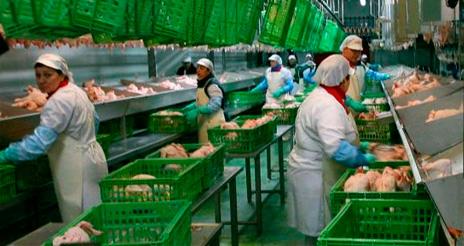 La industria de alimentación y bebidas, primer sector industrial de España