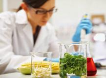 Nueva recopilación de normas microbiológicas de los alimentos y de información alimentaria