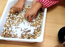 Más de 27.000 escolares participaron la semana pasada en la campaña 'Descubre las legumbres'