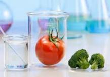 Las diez principales novedades del Reglamento (UE) 2015/2283, sobre nuevos alimentos