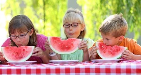 Campamentos y colonias de verano: ¿cómo garantizar la seguridad alimentaria?