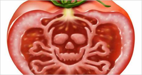 Introducción a la toxicología de los alimentos: algunos conceptos generales (primera parte)
