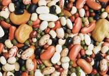 Los antinutrientes, compuestos naturales que interfieren con la absorción de nutrientes