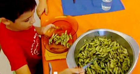 Gestión de la diversidad alimentaria en la escuela: la cocina consciente del 'Marta Mata'