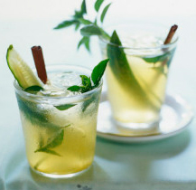 La ginebra, única bebida espirituosa que aumenta sus ventas en España