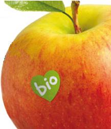 El programa de BioCultura incluye unas jornadas de comedores escolares ecológicos