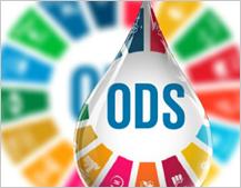El desperdicio alimentario, importante reto de sostenibilidad para cumplir con la Agenda 2030