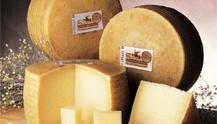 Siete diferencias entre un queso manchego con Denominación de Origen y otro que no lo es