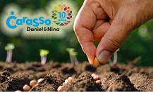 Se buscan proyectos innovadores de alimentación sostenible en colectividades