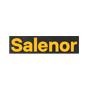 Salenor