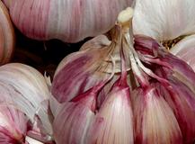 El ajo…  ¿es realmente tan saludable como lo suelen presentar?